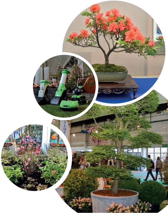 d0246cf1ca Idén a kertápolási eszközök, kisgépek, ingyenes kerttervezési és  dísznövényápolási tanácsadás mellett dísznövény vásár is volt.