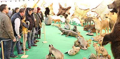 FeHoVa 2015 - Huge success in HUNGEXPO Budapest Fair Center